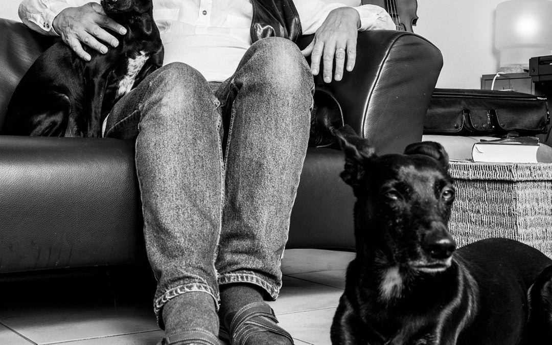 Ongedwongen portretfoto bestuurder thuis met honden
